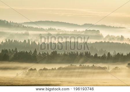 The golden rays of the sun in the Sumava forests. Summer landscape in fog Sumava Czech Republic. Morning fog in Sumava south Bohemia landscape