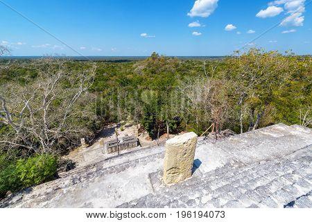 Calakmul Ruins And Jungle