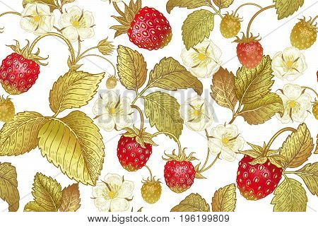 Seamless botanical pattern with flowers and berries of strawberry on white background. Vintage. Victorian style. Vector illustration. Template for kitchen design packaging for food paper textiles.