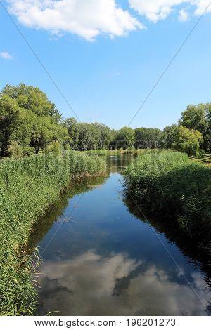 Park lake, blue sky, green lakeside, calm