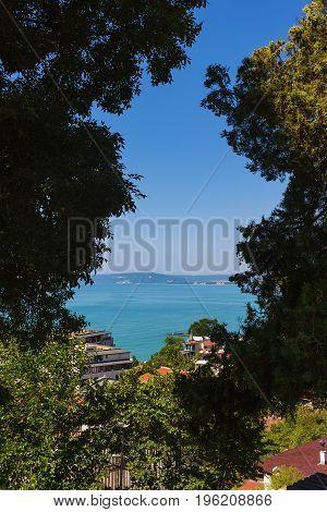 View sea through foliage from altitude in Balchik town black sea coast in Bulgaria.