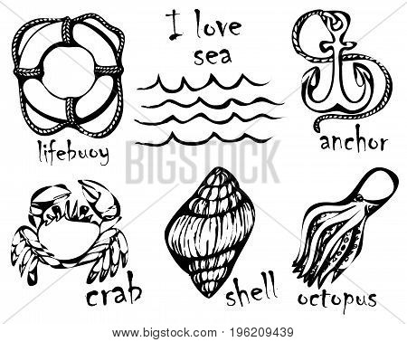 Graphic drawings of marine animals. Imitation of graphic drawings in ink. Drawing and creativity on the sea theme. Vector illustration.