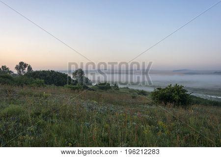 Flower fields near the river at dawn