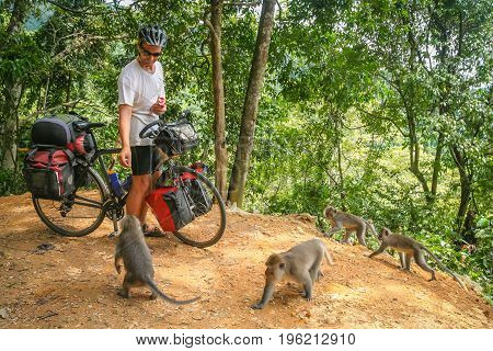 Male cyclist feeding group of monkeys while on a cycle touring trip in Bali, Indonesia