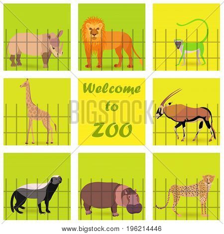 Set with Zoo Animals Placed Behind the Fence and on the Square Background. Welcoming Text on the Square in the Center. Vector EPS 10