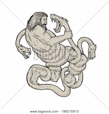 Illustration of Hercules Fighting Lernaean Hydra done in hand sketch Drawing style.