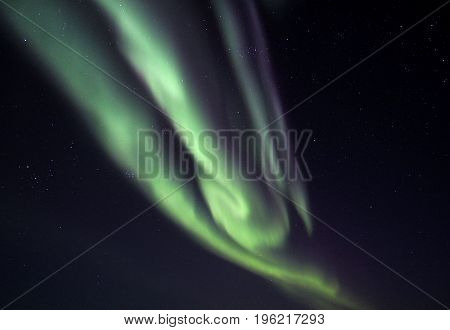 Green and Purple Aurora Borealis Dancing Against a Dark Star Sky