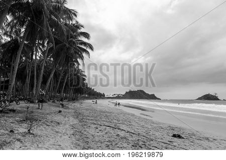 EL NIDO PALAWAN PHILIPPINES - JANUARY 20 2017: Black and white picture of coconut trees cloudy day and few people at Nacpan beach.