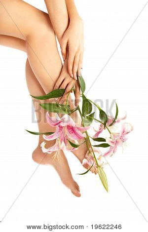 Beauty Woman Leg