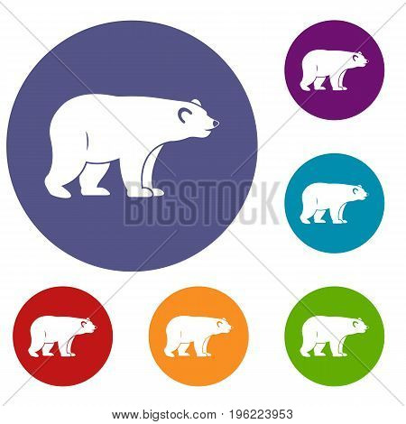 Wild bear icons set in flat circle red, blue and green color for web