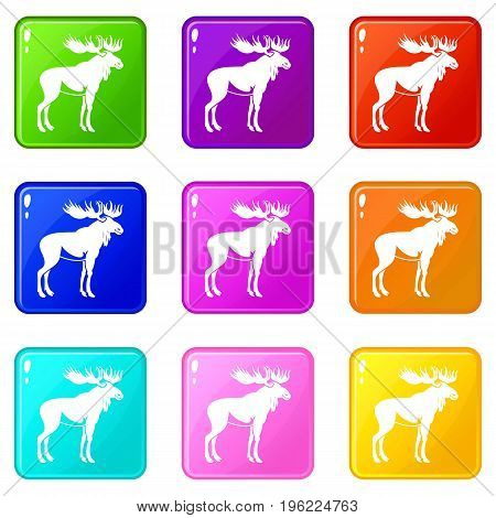 Moose icons of 9 color set isolated vector illustration