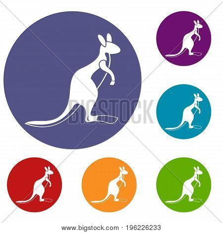 Kangaroo icons set in flat circle red, blue and green color for web