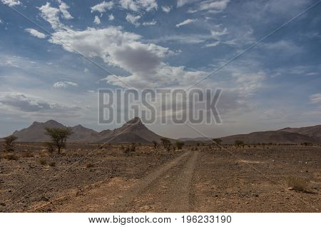 Gravel Road Through Morocco Steppe Landscape With Trees And Mount At Background. Area Between Atlas