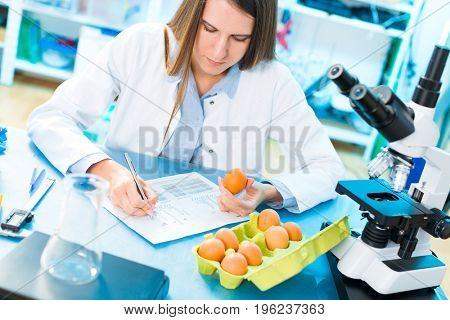 Eggs product research. Quality control processing foods.