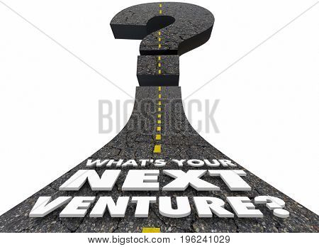 Whats Your Next Venture Road Question Mark 3d Illustration
