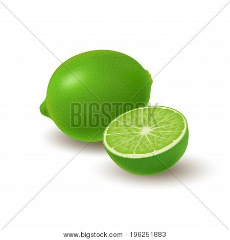 Isolated colored group of lime half and whole juicy fruit with shadow on white background. Realistic citrus
