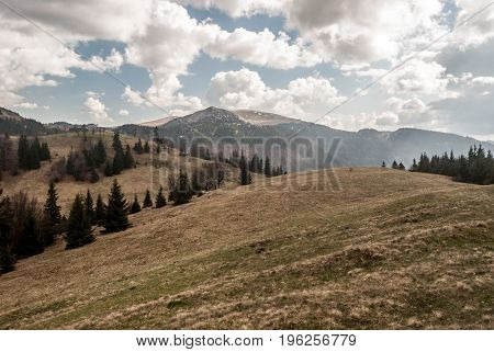 spring Velka Fatra mountains bellow Sopron hill in Slovakia with mountain meadow isolated trees hills with small snow fields and blue sky with clouds