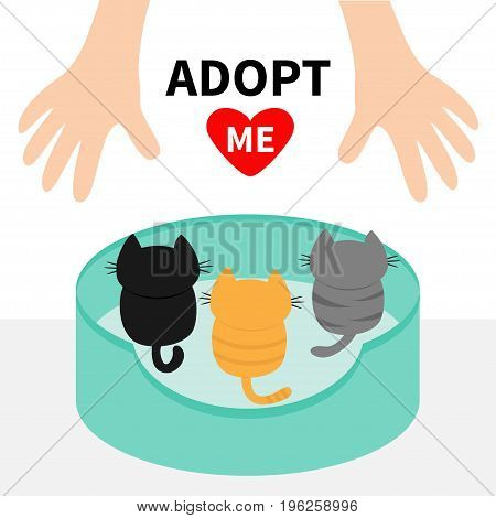 Three kittens looking up to human hand. Cat bed. Adopt me. Animal hug. Cute cartoon funny character. Red heart Helping hands concept Love card Flat design White background Isolated Vector illustration