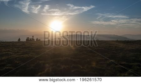 evening mountain meadow with isolated trees on Jeleni hrbet hill in Jeseniky mountains in Czech republic with hills on the background and sun with few clouds