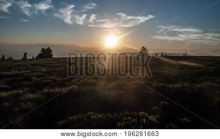 evening mountain meadow with isolated trees on Jeleni hrbet hill above Jeleni studanka in Jeseniky mountains in Czech republic with sun sunlight and blue sky with few small clouds