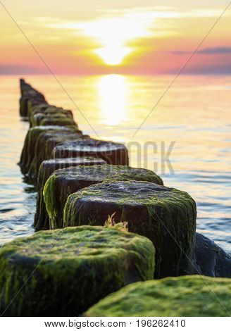 Wooden spur dykes in coastal sunset. Old groynes and wavy sea water, Baltic Sea, Island of Hiddensee, Germany.