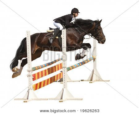 show jumping poster