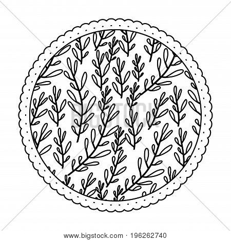 monochrome round frame with pattern of branches with ovoid leaf vector illustration