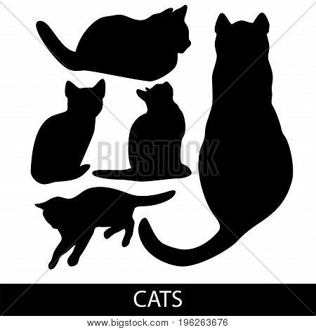 Cats Collection - Vector Silhouette. Color Set Of Home Pet