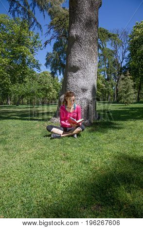 smiling happy brunette woman with pink sweater reading red book sitting in grass next to tree in park of Retiro in Madrid Spain