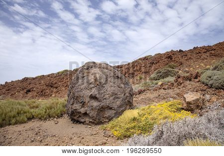 Canary Islands, Tenerife