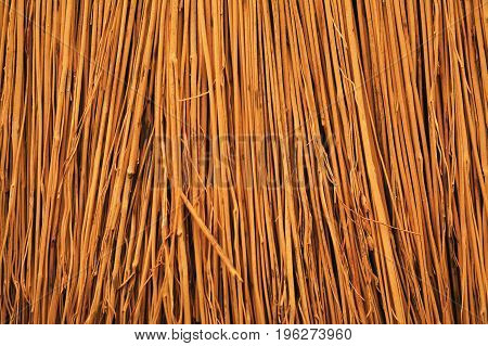 closeup shot of the straws of a traditional broom