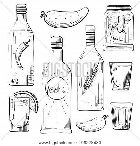 Set of bottles snacks to vodka. Glasses of vodka. Cucumber pepper lemon. Vector illustration in a sketch style