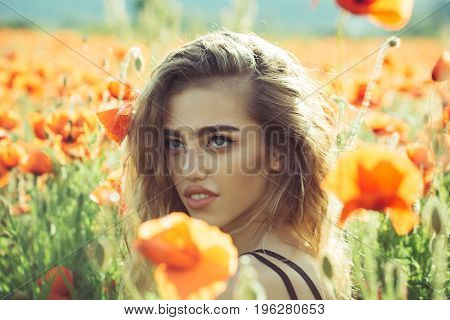 beautiful woman on poppy field with long hair and pretty face