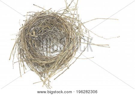 The bird nest made from twigs from nature. Isolated on white background. Residence.