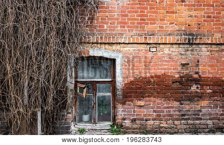 old rude brick wall with window