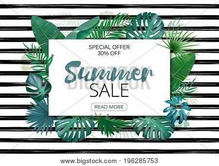 Summer sale advertising template. Tropic leaves background with frame for your text. Eps10 vector