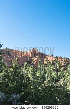 Hoodoos and forest in Bryce Canyon National Park, Utah