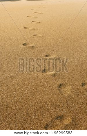 Footprints In The Sand Summer Beach Discovery Concept