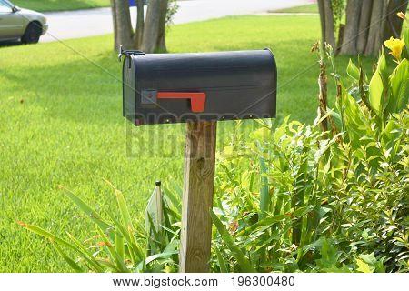 Traditional mailbox in an overgrown flower garden