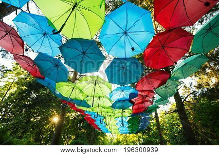 Colorful umbrellas hanged on a trees in a park