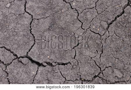 Texture background, soil soil in dry region