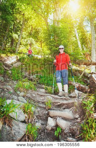 Group of tourist hiker walking in forest outdoor. Tourism concept