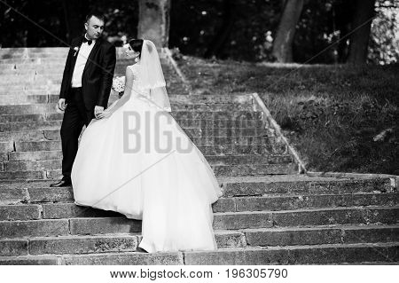 Perfect Wedding Couple Posing On The Stairs In The Park. Black And White Photo.