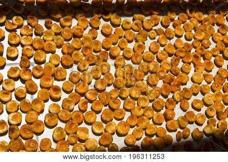 Dried apricots in the season, organic natural apricots cleaned from the seeds for drying, pictures of dried apricots in the sun, apricots arranged against the sun for drying,