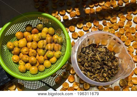 Dried apricot fruit and apricot seeds, a plateful of apricot kernel pictures,