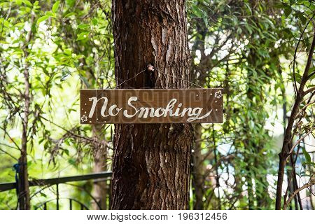 No smoking sign in the garden, Healthy Concept