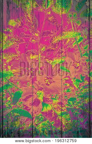 Artistic wooden background with bright colourful flowers