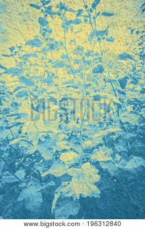 Artistic floral background in blue with leaves