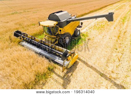 Aerial view of combine harvester. Harvest of rapeseed field. Industrial background on agricultural theme. Biofuel production from above. Agriculture and environment in European Union.