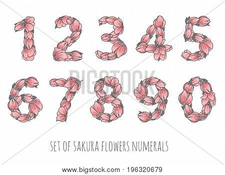 Floral numbers vector set - sakura flowers elegant style numerals - ornament for decoration or education design